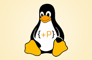 linux_pp